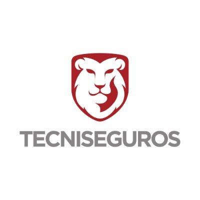 @Tecniseguros