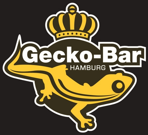 gecko bar hamburg speeddating