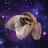 One Slothy Boi