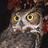 Antithesis twitter profile