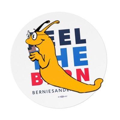 Ucsc Summer Session 2020.Ucsc Slugs For Bernie Sanders 2020 Slugsforbernie Twitter