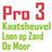 Pro3 LoonopZand