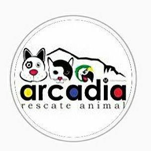 Arcadia rescue Animals