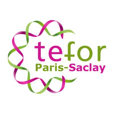 Tefor, Paris-Saclay