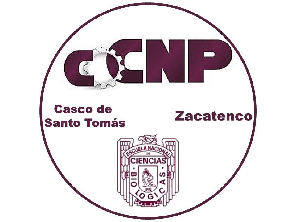 @CocnpZ