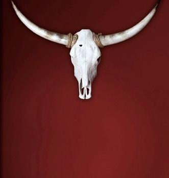 @Vier_fuer_Texas
