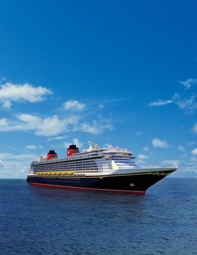 The Cruise Blog Profile Image