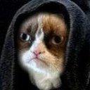 Larry Ellison's Cat - @thielswann - Twitter