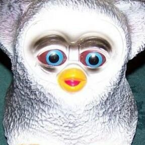 Roblox Furby Burnt Furby On Twitter Does Roblox Even Care Bout The Oders