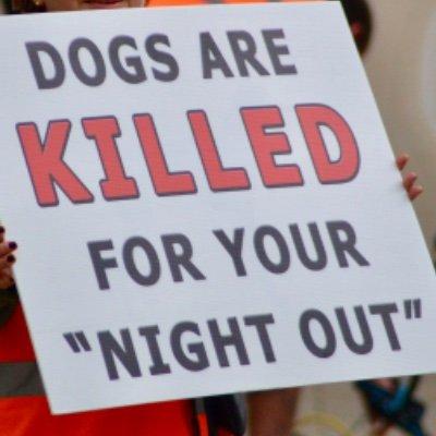 Poole Against Greyhound Exploitation