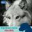 karen wolf