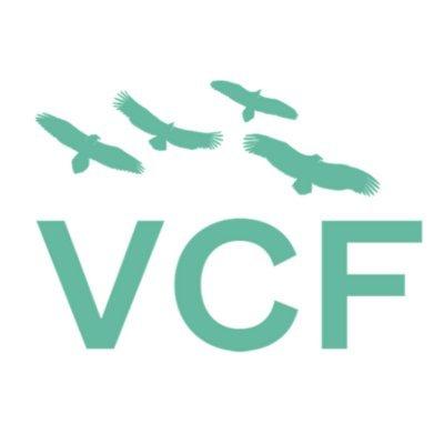 Vulture Conservation Foundation (@4Vultures )