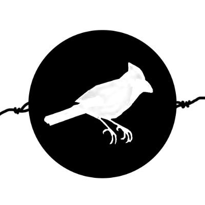 Bird&Cage Cinema