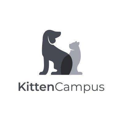 Kitten Campus