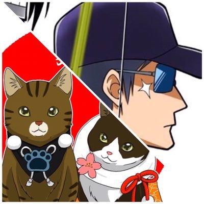 きな猫ch/釣りいろは @kina_n77