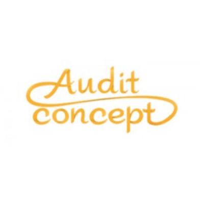 audit_concept