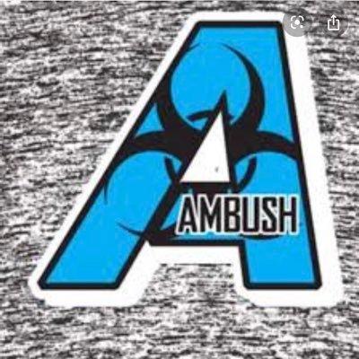 Ambush, LLC