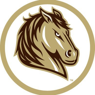 SMSU Athletics