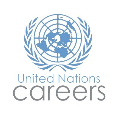 United Nations Internship in India