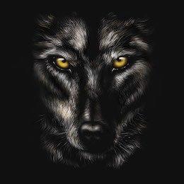wolfmm (@YvetteMiley) Twitter profile photo