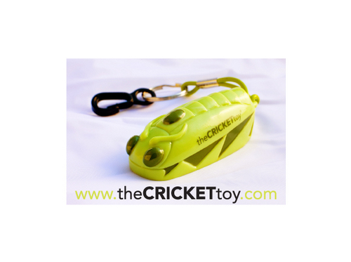 @theCRICKETtoy