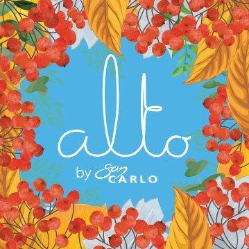 Logo de la société Alto by San Carlo