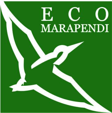 @Ecomarapendi