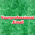 Your Professional Email