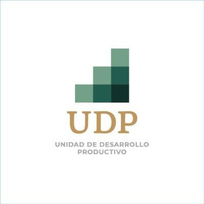 @Economia_UDP