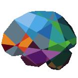 The Virtual Brain