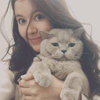 Cat Lovers Community