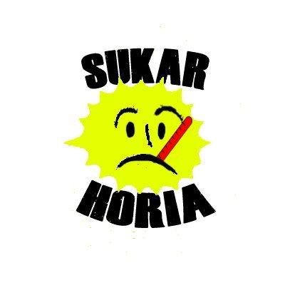 Resultado de imagen de sukar horia jardunaldiak