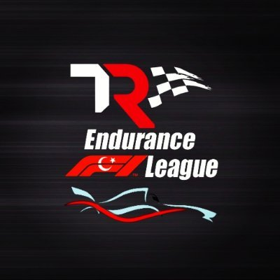 Thrustmaster TR Endurance F1 League