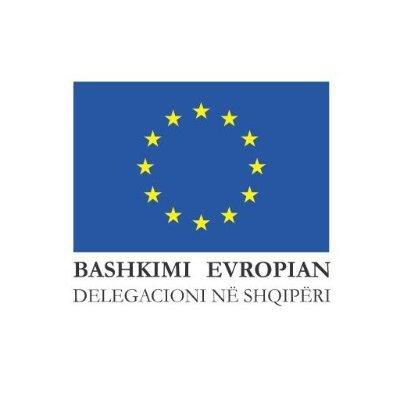 EU in Albania