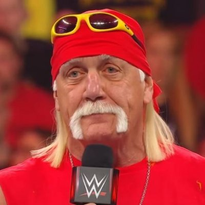 Sad Hulk Hogan (@OK__NowWhat) Twitter profile photo