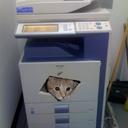 86 Chambers Printer (@86ChambersPrint) Twitter