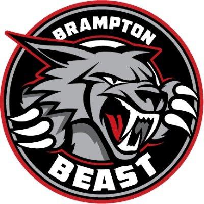 Znalezione obrazy dla zapytania: brampton beast