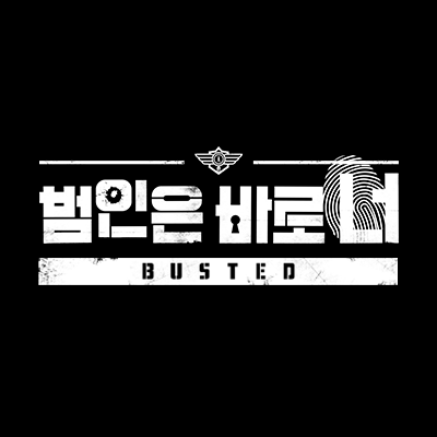 BustedNetflix