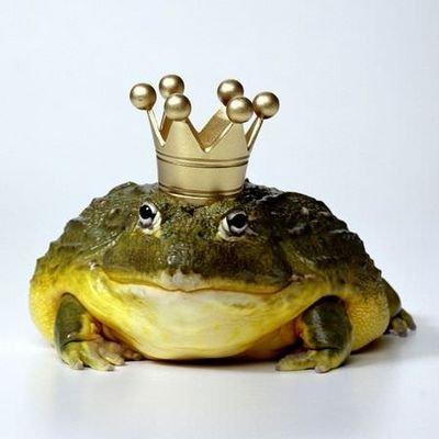 Lady of the toads (@GqB38b6kwAZJyWi)