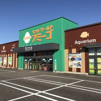 富山 アミーゴ