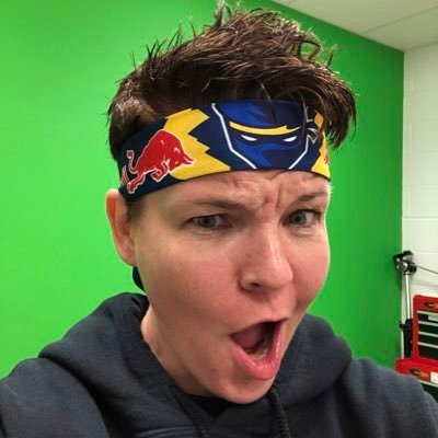 Tech Ninja (@dina_dreistadt) Twitter profile photo
