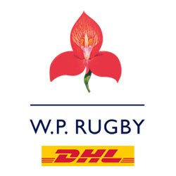 WP RUGBY | Social Profile