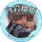 @vtfn4rion Profile picture