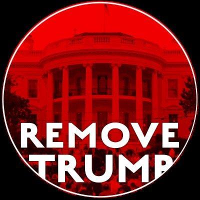Remove Trump (@Remove_TrumpNow) Twitter profile photo