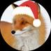 @FOX_free_life