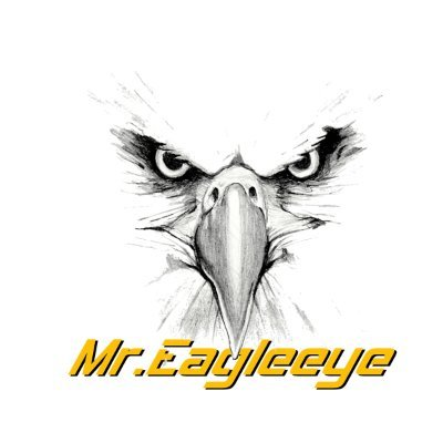 Mr.Eagleeye