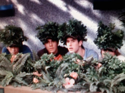 BTR Tree Hats ( BTRTreeHats)  291846195fb