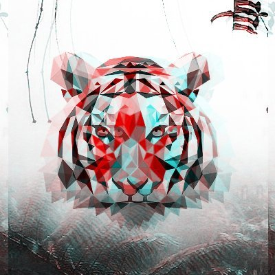Trap Jungle 🍃
