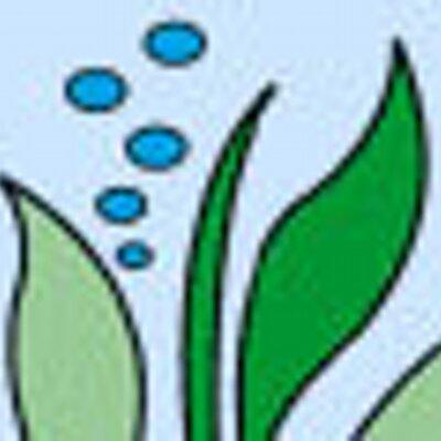 Aquaplantsonline Aquaplantsonlin Twitter
