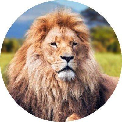 Ali (@allushiii) Twitter profile photo